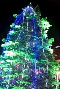 クリスマス③