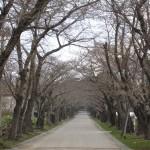 20100425_陣屋トンネル
